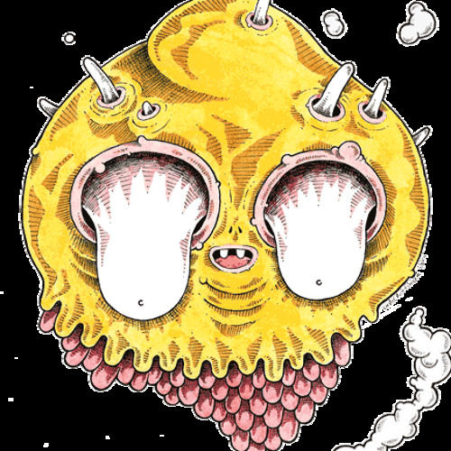 SLiDeFM's avatar
