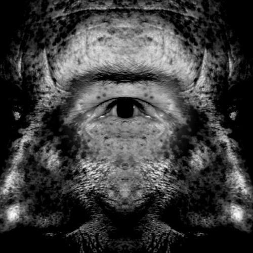 outersquid's avatar