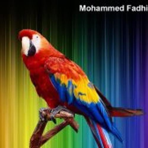 Mohammed Fadhil1's avatar