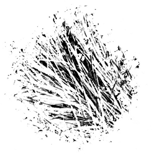 leuphonie's avatar