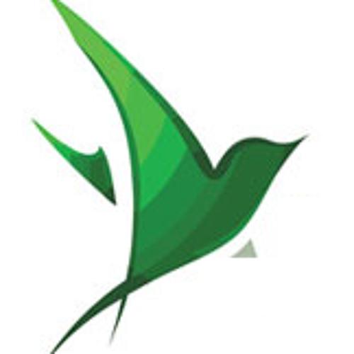 halkyonic's avatar