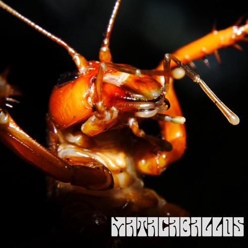 Matacaballos's avatar
