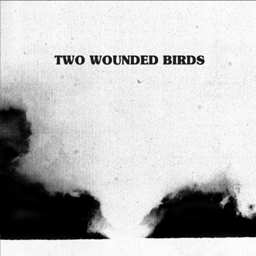 Two Wounded Birds's avatar