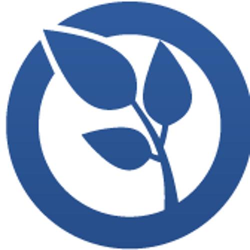 SOH Studios's avatar