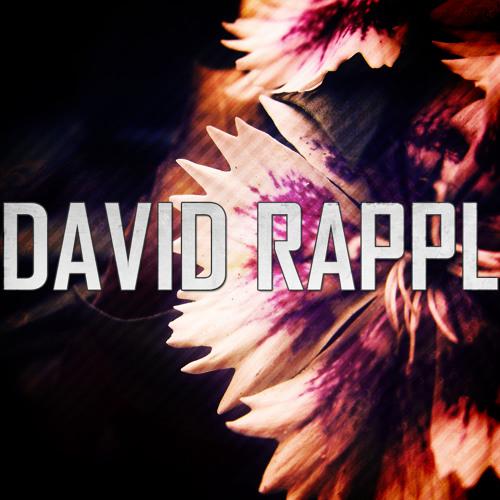 David Rappl's avatar