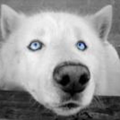 Cory Sveum's avatar