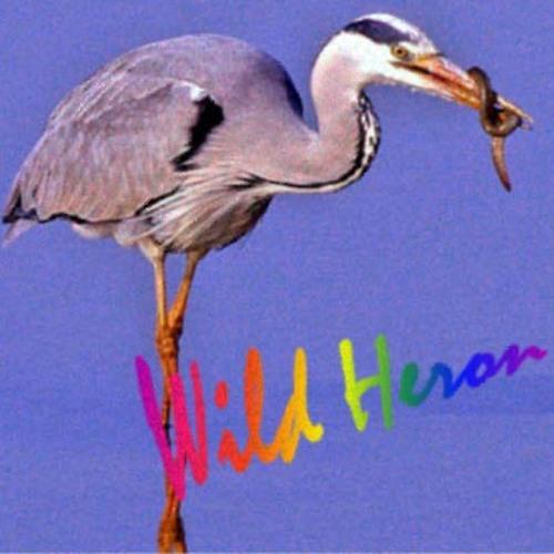 Wild Heron's avatar