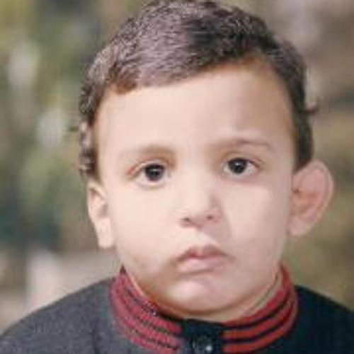 fawzy ayad's avatar