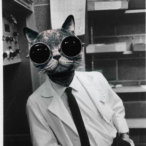 FlemCat's avatar