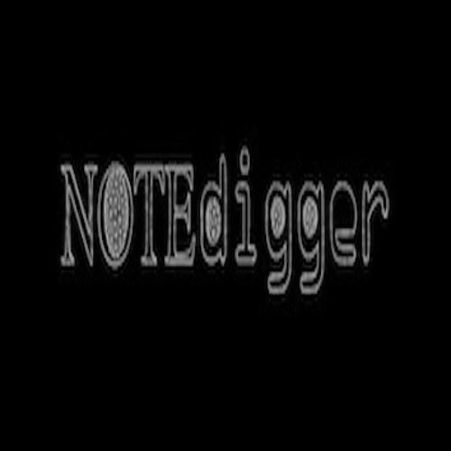 Notedigger's avatar