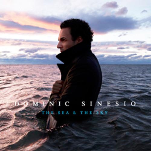 Dominic Sinesio's avatar