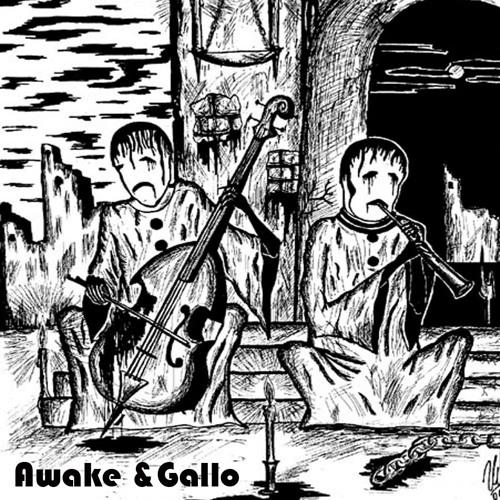 Awake_&_Gallo's avatar