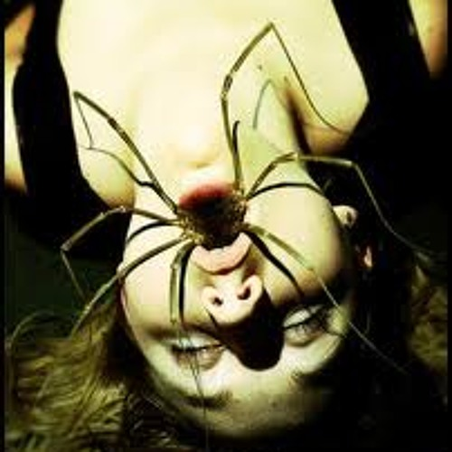Mouthful of spiders's avatar
