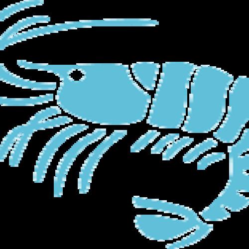 Sir Shrimp's avatar