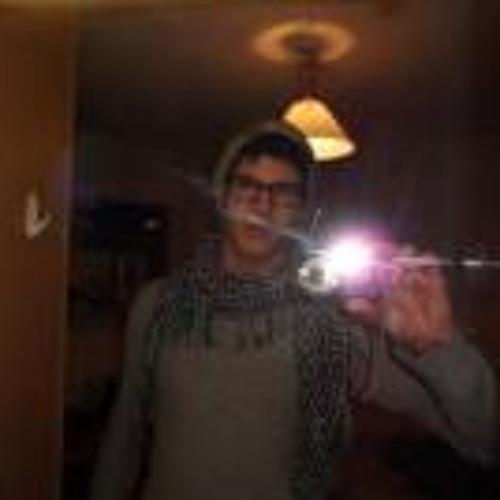 Ingo Meise's avatar