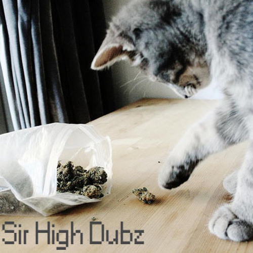 SirHighDubz's avatar