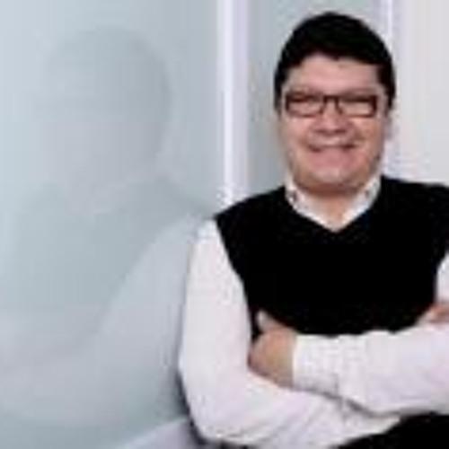 Marcelo Ricaldi's avatar
