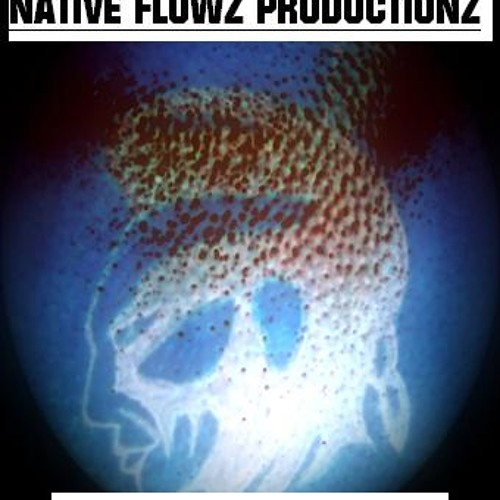 native flows's avatar