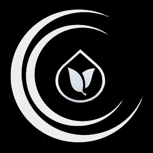 LiquiFeed  DnB Promotion's avatar