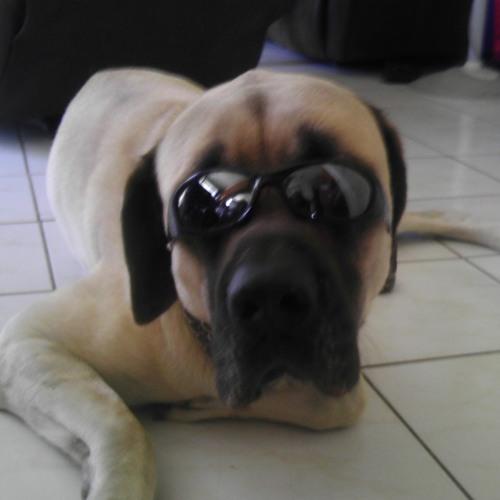 EddieBermudez's avatar