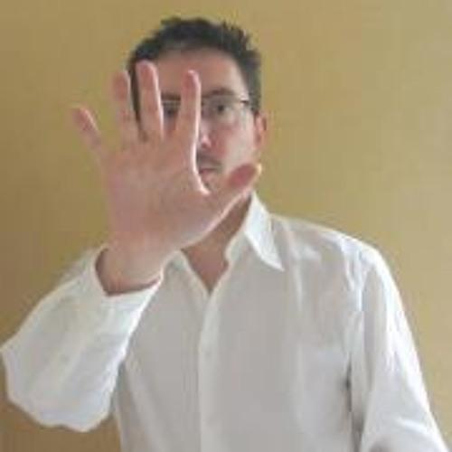 Hervé Holin's avatar