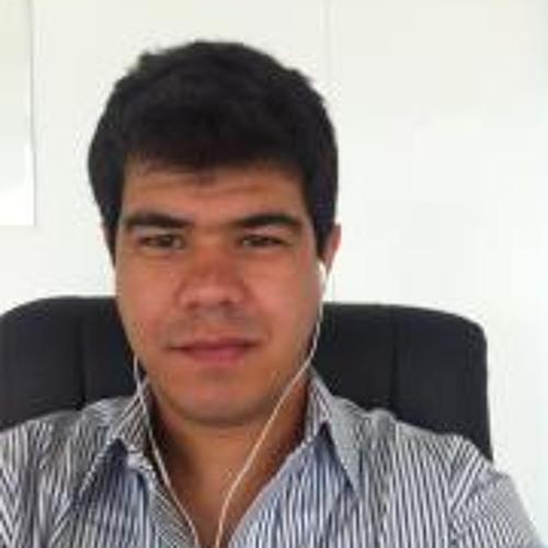 Fabricio Da Silveira's avatar
