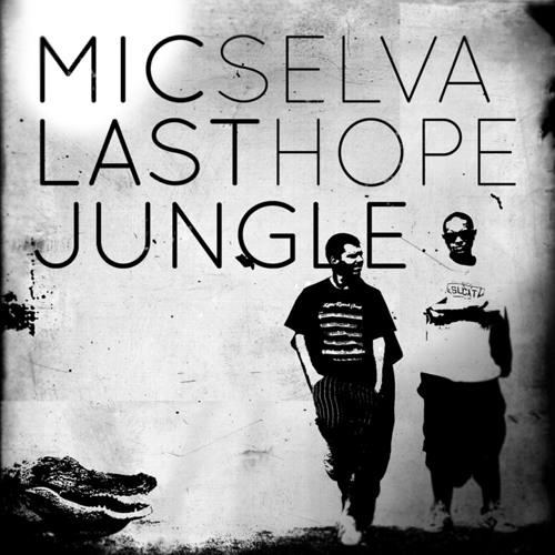 MicSelva's avatar