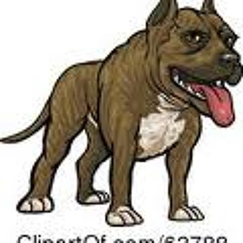 Pitbull4540's avatar