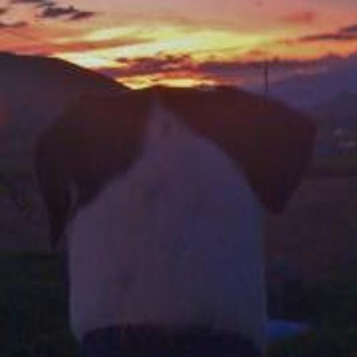 Marcela Raigoza 1's avatar