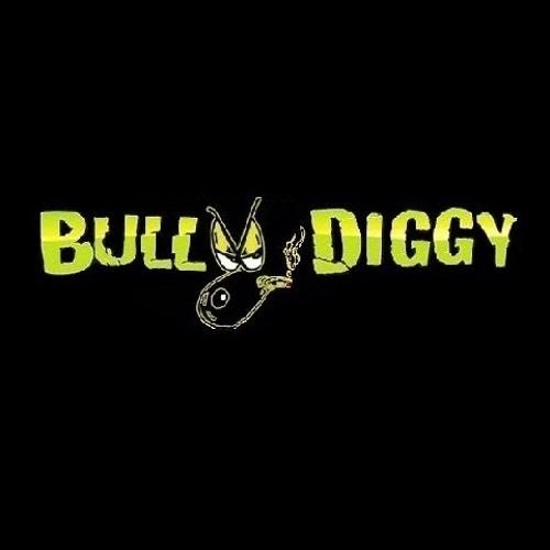 Bull Dogg MC's avatar