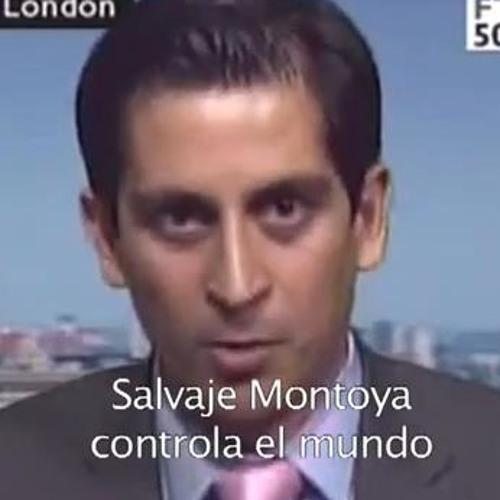 salvajemontoya's avatar