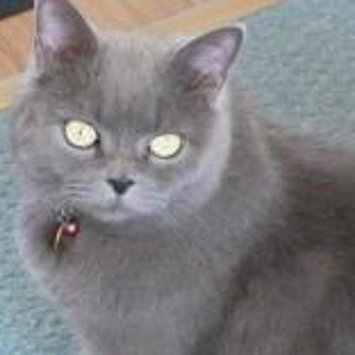 Annie Judge's avatar