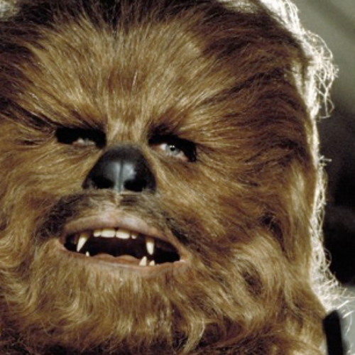 The Wookie`'s avatar