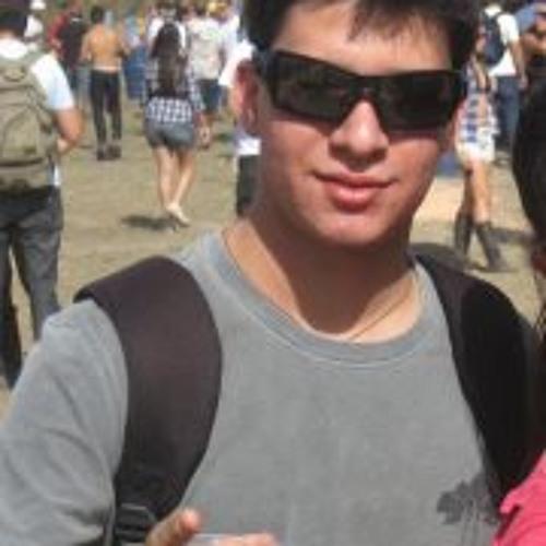 Leo Ferreira 2's avatar