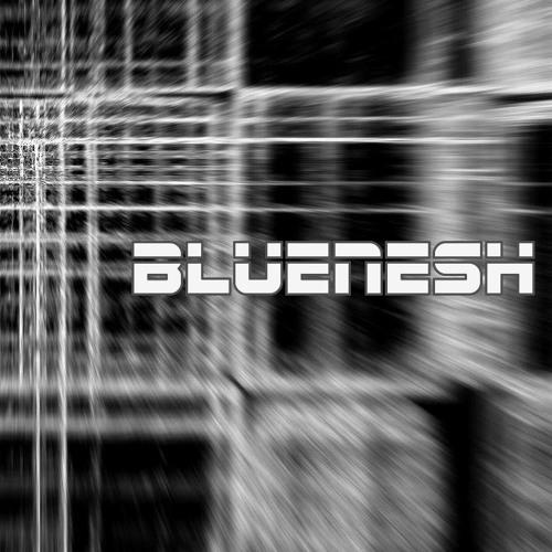 Bluenesh's avatar