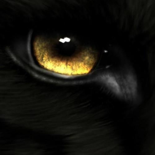 Wolves Ember's avatar
