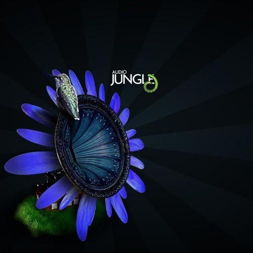 AnitA's avatar