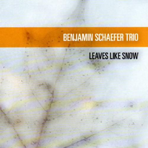 Benjamin Schaefer Trio's avatar