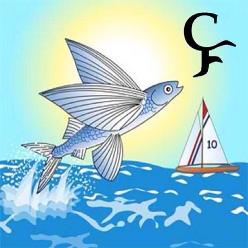 cloudlesscod's avatar