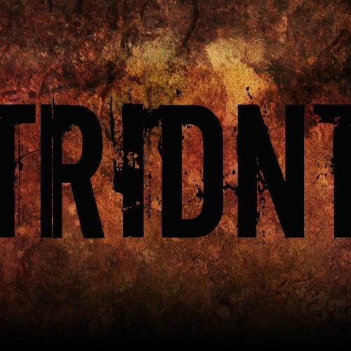 Tridnt's avatar