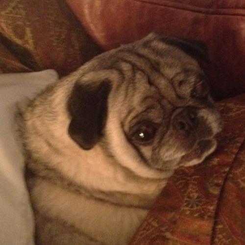 benplumley's avatar