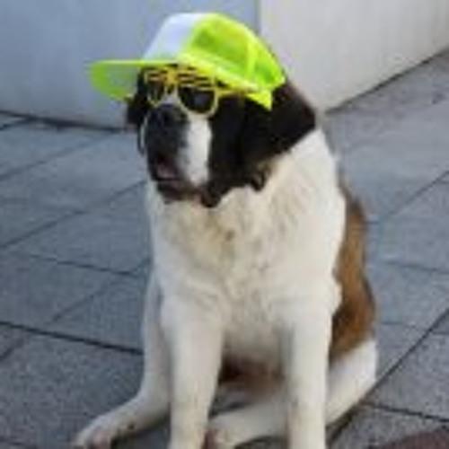 Rav Er's avatar