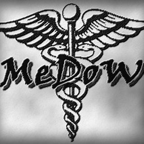 MeDoW (WLR)'s avatar