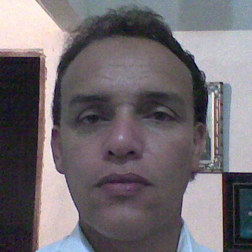 elci's avatar