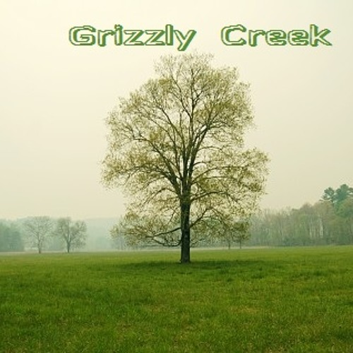 Grizzly Creek's avatar