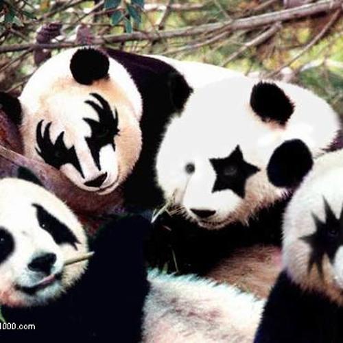 Bullet Proof Panda's avatar
