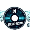 New Song 2012  Dj Fulvio Premi *team Skyride*
