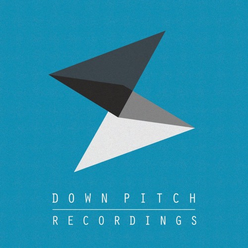 Downpitch Recordings's avatar