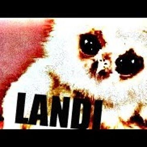 Skrillex Ft Damian Marley - Bun Dem (Landi's Off Kilter Remix)