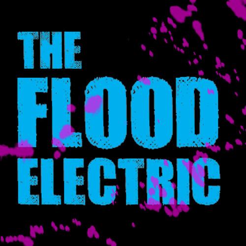 The Flood Electric's avatar